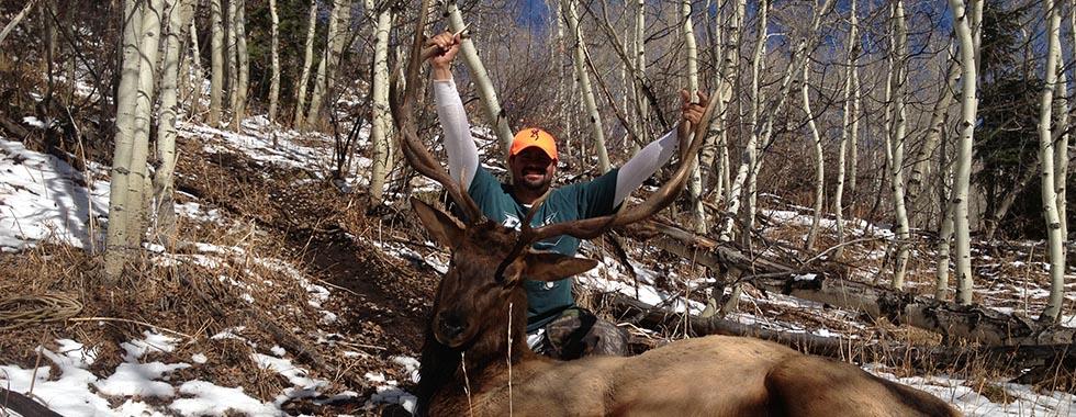 Elk Hunting in Colorado's Wilderness
